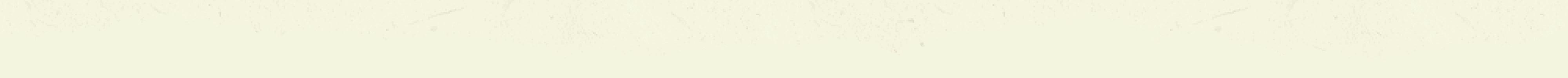 paper-divider-bottom-v2@2x
